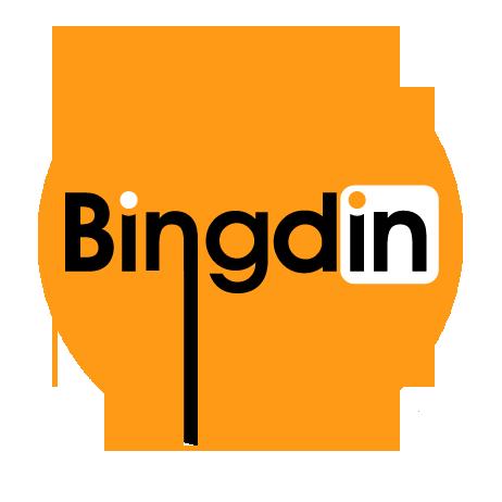 Bingdin Cover