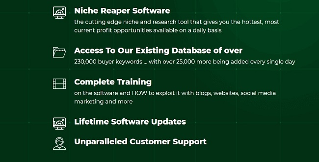 niche-raper-features