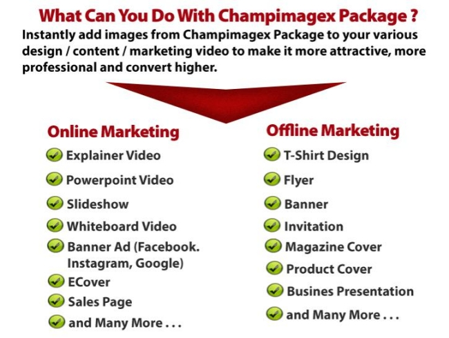 champimagex-how-does-it-works